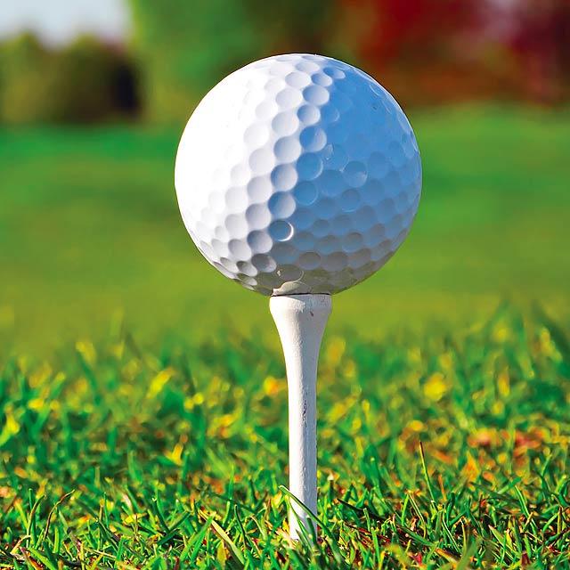 Hydor golfové týčko - foto