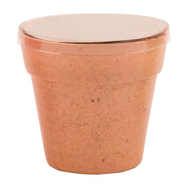 Petunia květináč se semínky petunie - béžová