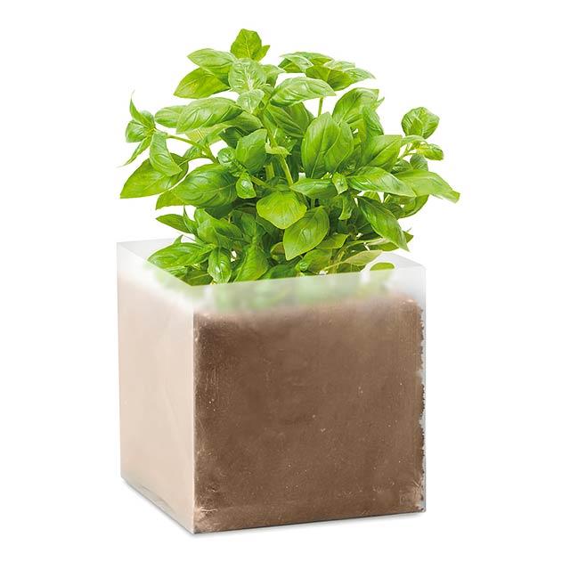 BASIL - Kompost se semínky Bazalka     - béžová